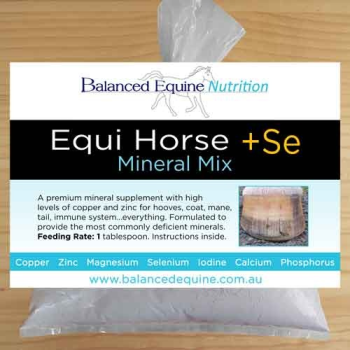 Equi Horse + Se Mix|TheraRods in place - pad not included.