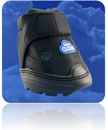 cloud boot